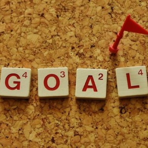 prioritize goals
